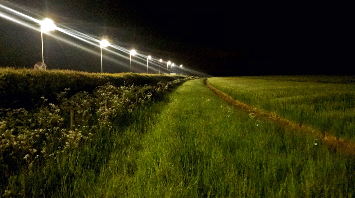 LED lighting at one of my field sites